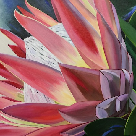 (CreativeWork) PRIZE PROTEA by Rosanne Steele. Acrylic Paint. Shop online at Bluethumb.