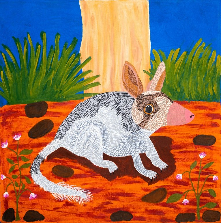 (CreativeWork) Bilby (17-TA133) by Lindy Brodie. arcylic-painting. Shop online at Bluethumb.