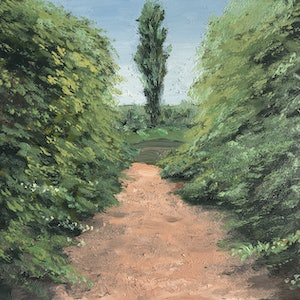 (CreativeWork) Frescati Lane with Tree, New Norfolk, Tasmania by Michael Bessell. oil-painting. Shop online at Bluethumb.