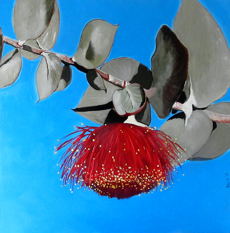 (CreativeWork) Flowering Gumnut by Julie Hollis. acrylic-painting. Shop online at Bluethumb.