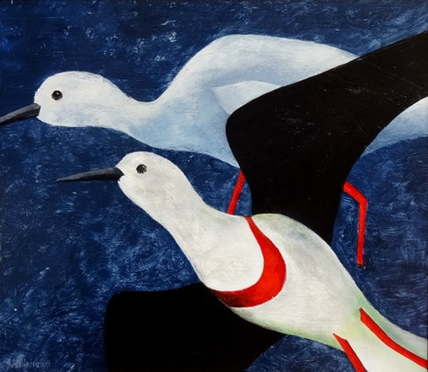 (CreativeWork) WATERBIRD IN FLIGHT by Johanna Hildebrandt. Acrylic Paint. Shop online at Bluethumb.