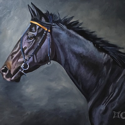 (CreativeWork) Midnight Rendezvous  by Jan Henderson. acrylic-painting. Shop online at Bluethumb.