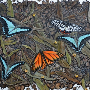 (CreativeWork) Butterfly Ballet by Fiona Groom. arcylic-painting. Shop online at Bluethumb.