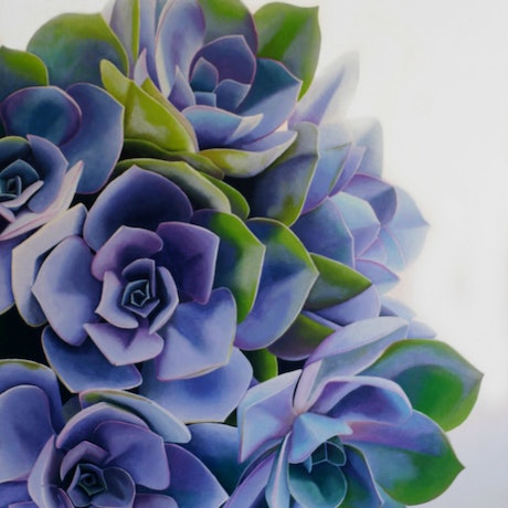(CreativeWork) Succulent Beauty  by Bec Bartell. Acrylic Paint. Shop online at Bluethumb.