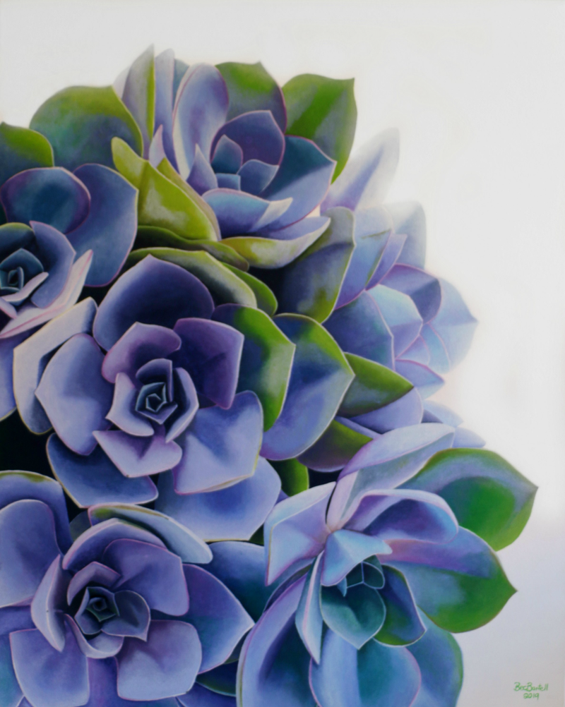 (CreativeWork) Succulent Beauty  by Bec Bartell. arcylic-painting. Shop online at Bluethumb.