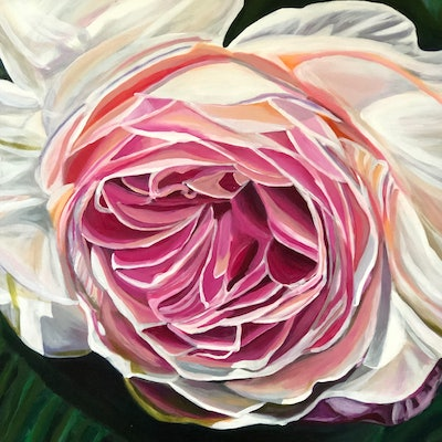 (CreativeWork) Blooming Rose  by Angella Fernando. acrylic-painting. Shop online at Bluethumb.