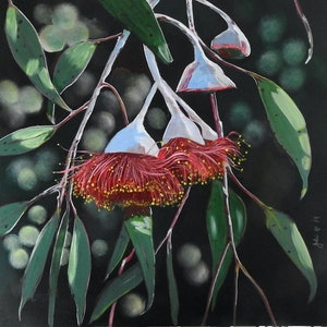 (CreativeWork) Gumnut Blossoms Red - Finalist Fairholme Art Prize 2019  by Julie Hollis. arcylic-painting. Shop online at Bluethumb.