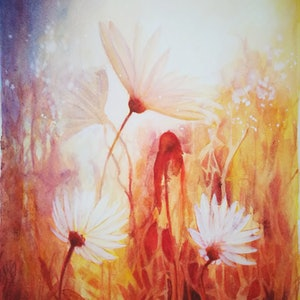 (CreativeWork) Sunlight and Daisies by Lucinda Leveille. #<Filter:0x00007fc19c354520>. Shop online at Bluethumb.
