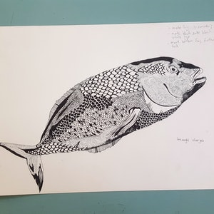 (CreativeWork) The Biggest Fish of the Andaman Sea by Chrysa Koukoura. #<Filter:0x00007fc1b8b4a790>. Shop online at Bluethumb.