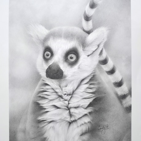 (CreativeWork) Lee by Candace Slager. Drawings. Shop online at Bluethumb.