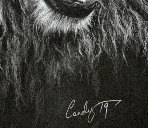 (CreativeWork) Lionel by Candace Slager. #<Filter:0x00007f3c24b20f18>. Shop online at Bluethumb.