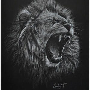 (CreativeWork) Lionel by Candace Slager. drawing. Shop online at Bluethumb.