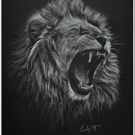 (CreativeWork) Lionel by Candace Slager. Drawings. Shop online at Bluethumb.