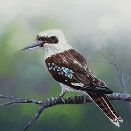 (CreativeWork) Kookaburra Sits by Robert Corcoran. Acrylic Paint. Shop online at Bluethumb.