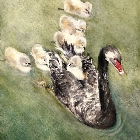 (CreativeWork) Hitching a Ride, Albert Park Lake , Melbourne  by Geoff Stanistreet. Watercolour Paint. Shop online at Bluethumb.