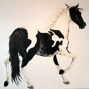 (CreativeWork) Snow Pinto by Roby Callaghan. arcylic-painting. Shop online at Bluethumb.