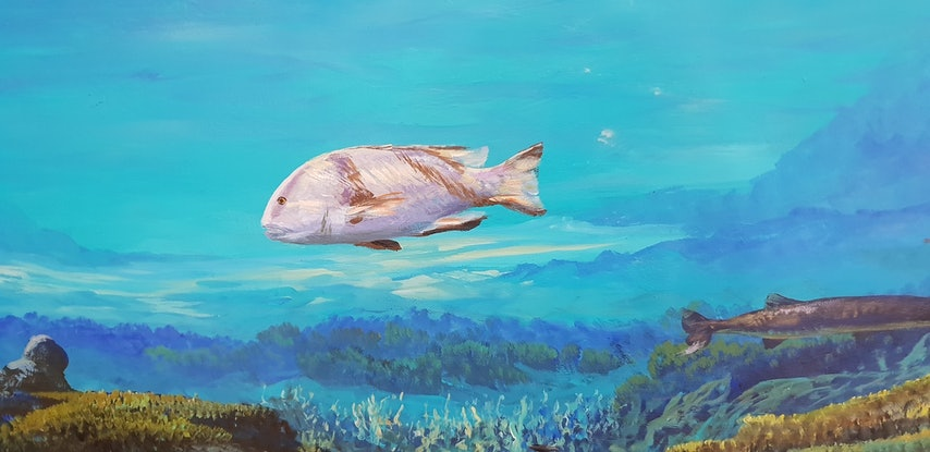 (CreativeWork) UNDERWATER MURAL by Margaret HADFIELD. Acrylic Paint. Shop online at Bluethumb.