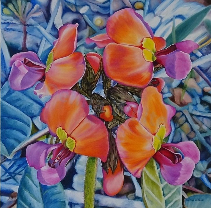 (CreativeWork) Coral Delight by Delma White. oil-painting. Shop online at Bluethumb.
