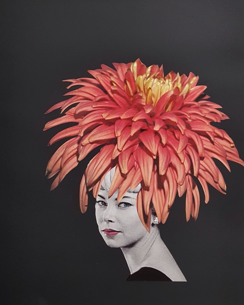 (CreativeWork) Chrysanthemum Series #1 by Karen Coull. mixed-media. Shop online at Bluethumb.