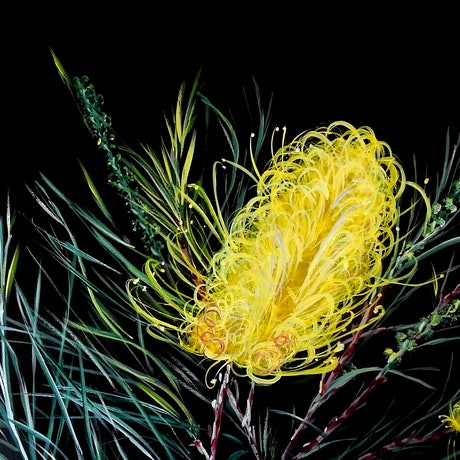 (CreativeWork) Grevillea by julie hollis. Acrylic Paint. Shop online at Bluethumb.