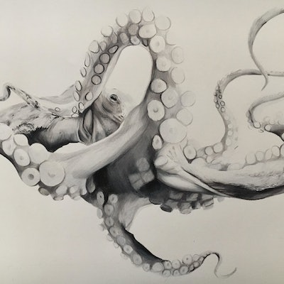(CreativeWork) Creature by Abbey Turner. drawing. Shop online at Bluethumb.