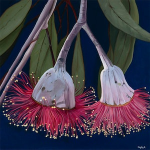 (CreativeWork) Crimson Beauty by Hayley Kruger. arcylic-painting. Shop online at Bluethumb.