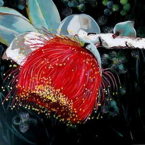 (CreativeWork) Gumnut Beauty by Julie Hollis. arcylic-painting. Shop online at Bluethumb.