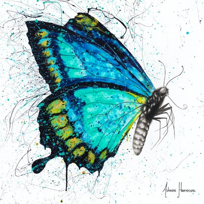 (CreativeWork) Morning Citrus Butterfly by Ashvin Harrison. Acrylic Paint. Shop online at Bluethumb.