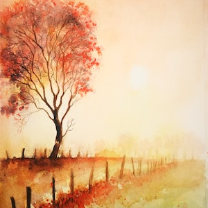 (CreativeWork) Autumn Light by Lucinda Leveille. #<Filter:0x00007f5a09786f80>. Shop online at Bluethumb.