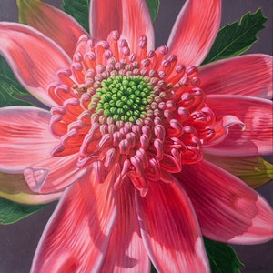 (CreativeWork) Pink Waratah Beauty, 2 by Fiona Craig. oil-painting. Shop online at Bluethumb.