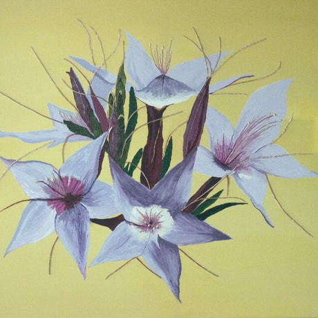 (CreativeWork) Sticky Starflower by Claudette Pope    -    Wild Beauty. Acrylic Paint. Shop online at Bluethumb.