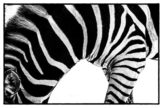 (CreativeWork) Life in Black and White 2 Ed. 3 of 50 by Joseph Remi d'Argent. Photograph. Shop online at Bluethumb.