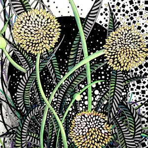 (CreativeWork) Botanical Mini Story - Three Yellow Natives by Tania Daymond. drawing. Shop online at Bluethumb.