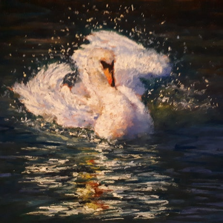 (CreativeWork) Swan III by William Choi. Drawings. Shop online at Bluethumb.