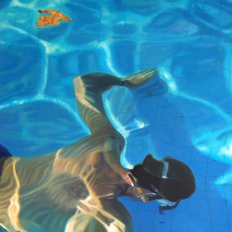 (CreativeWork) Floating Leaf 2 by Sheree Wright. Oil Paint. Shop online at Bluethumb.