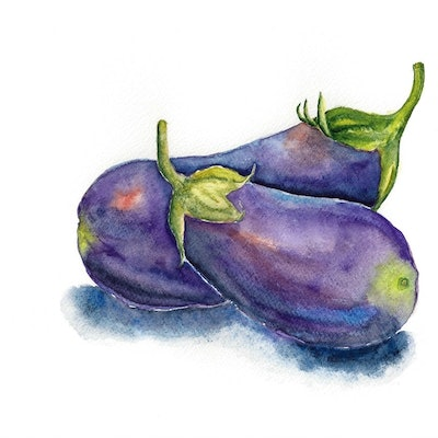 (CreativeWork) Eggplant by Jing Tian. watercolour. Shop online at Bluethumb.