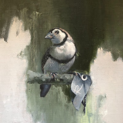 (CreativeWork) BIRD WATCHING by Rosa Fedele. oil-painting. Shop online at Bluethumb.