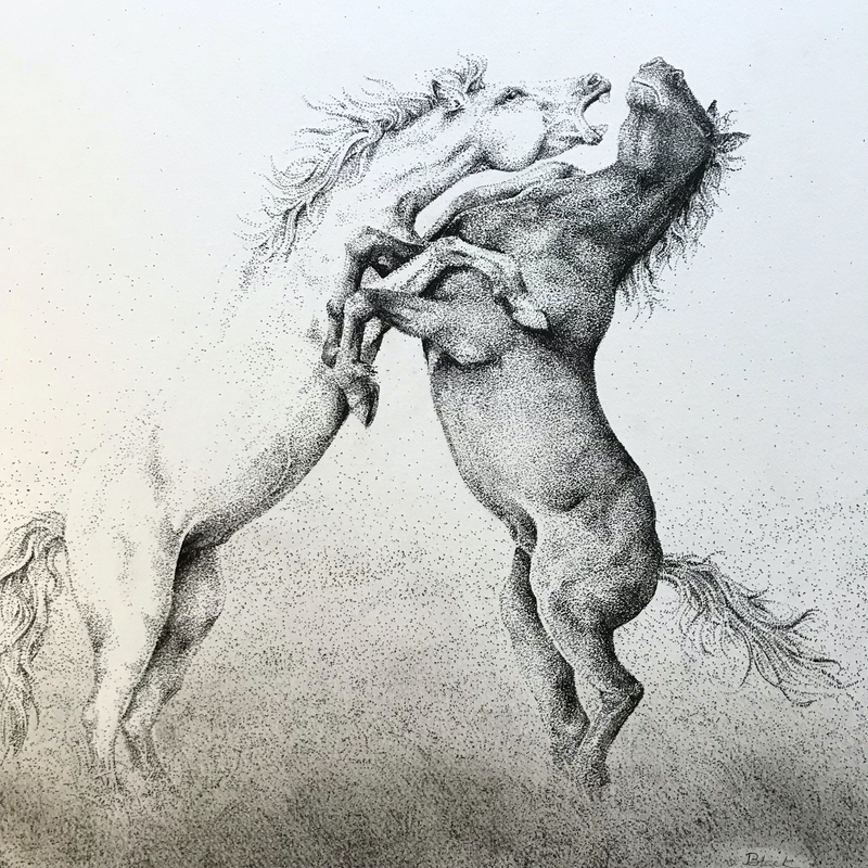 (CreativeWork) Horsing Around by Jess Black. drawing. Shop online at Bluethumb.