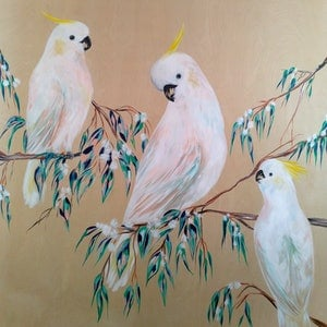 (CreativeWork) Afternoon Cockatoos In The Gum Blossoms  by Amanda Skye Mulder. arcylic-painting. Shop online at Bluethumb.
