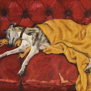 (CreativeWork) Matilda sleeping by James Needham. oil-painting. Shop online at Bluethumb.
