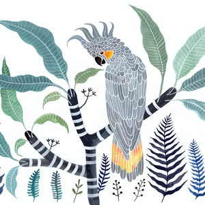 (CreativeWork) Yellow Tailed Grey Cockatoo, Frangipani and Ferns Ed. 34 of 50 by Sally Browne. print. Shop online at Bluethumb.