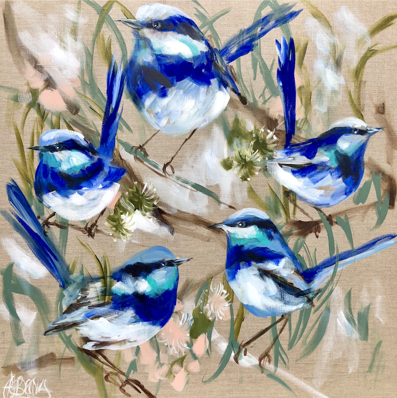 (CreativeWork) Blue wrens and gum blossoms  by Amanda Brooks. arcylic-painting. Shop online at Bluethumb.