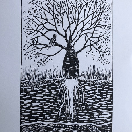 (CreativeWork) Boab by the Rivers Edge  Ed. 18 of 25 by Lily Hass. Print. Shop online at Bluethumb.
