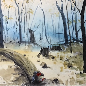(CreativeWork) After the Fire II by Bernd Rieve. watercolour. Shop online at Bluethumb.