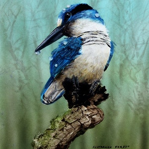 (CreativeWork) Australian Forest Kingfisher - miniature by Paul Margocsy. Watercolour Paint. Shop online at Bluethumb.
