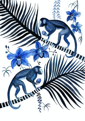 (CreativeWork) Indigo Monkeys, Cymbidium Orchids and Palms  Ed. 1 of 50 by Sally Browne. Print. Shop online at Bluethumb.