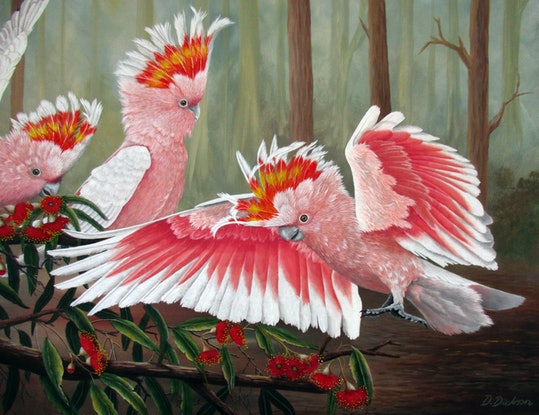 (CreativeWork) Major Mitchells - Cockatoos by Debra Dickson. Acrylic Paint. Shop online at Bluethumb.
