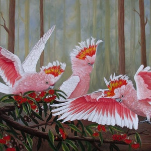 (CreativeWork) Major Mitchells - Cockatoos by Debra Dickson. acrylic-painting. Shop online at Bluethumb.
