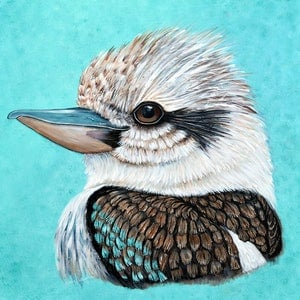 (CreativeWork) Kookaburra Gaze by Linda Callaghan. acrylic-painting. Shop online at Bluethumb.