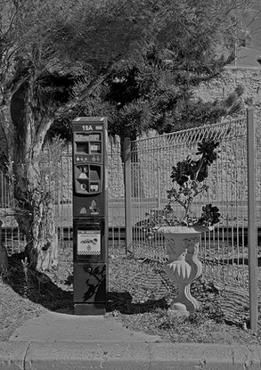 (CreativeWork) Gardens of Fremantle, Black and White Photography, Fine Art Print, Home Decorating, Archival Artwork, A4 Size Ed. 1 of 1 by Clinton Price. Photograph. Shop online at Bluethumb.